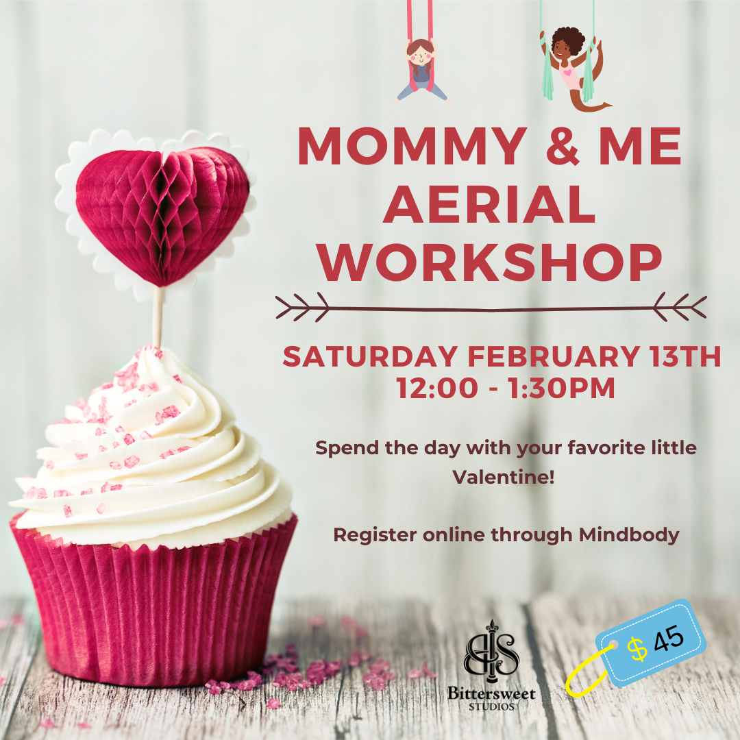 Mommy & Me Aerial Workshop